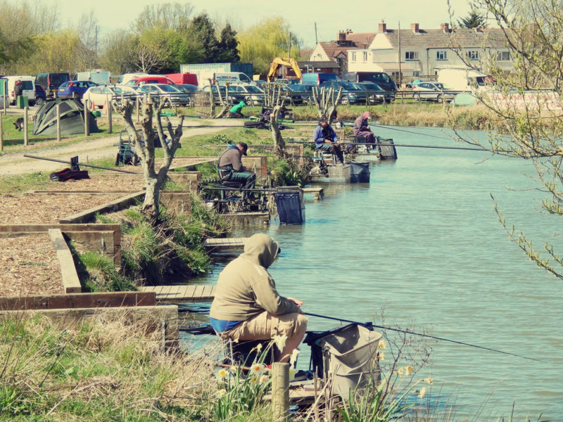 Summerhayes-Fisheries-Somerset